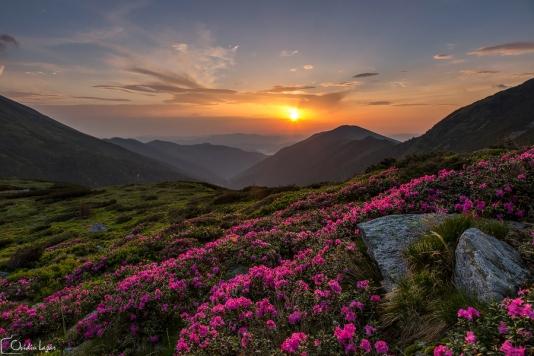 Imagini pentru asezari la munte